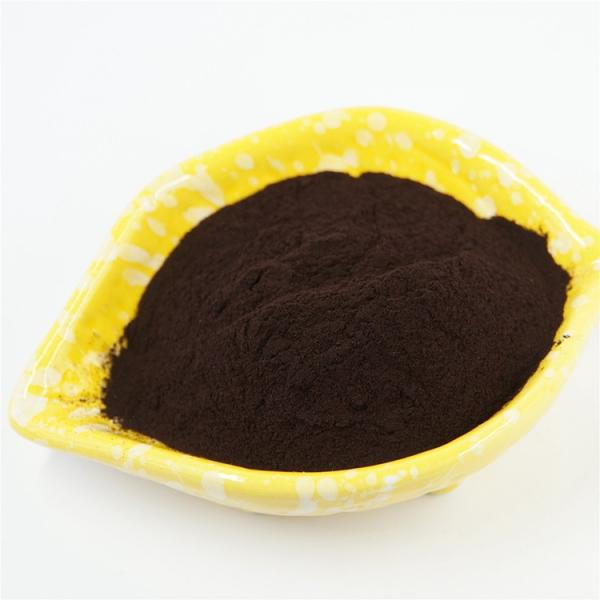 Organic Certificated Flake Organic Fertilizer100% Soluble Humic Acid